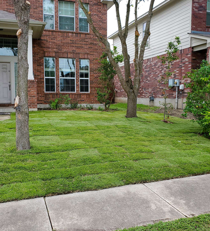 very nicely manicured front lawn in front of a brick house